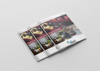 Création Rapport d'Activités 2016 SMD3
