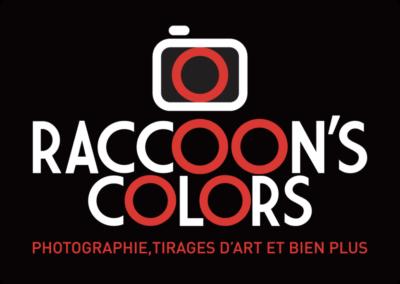 Création Logo Raccoon's Colors