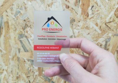 Création Carte de Visite PVC Pro Energie