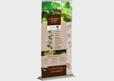 Création Roll up Entreprise Agroalimentaire Andesol