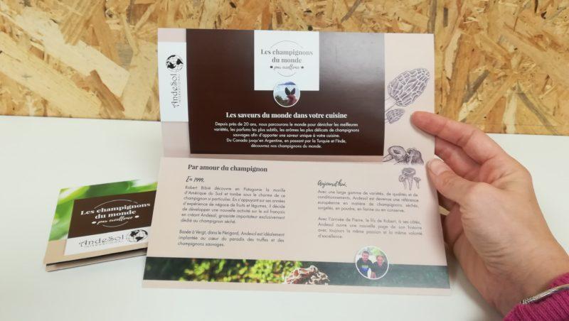 creation-depliant-grossiste-champignons-seches-andesol-dordogne