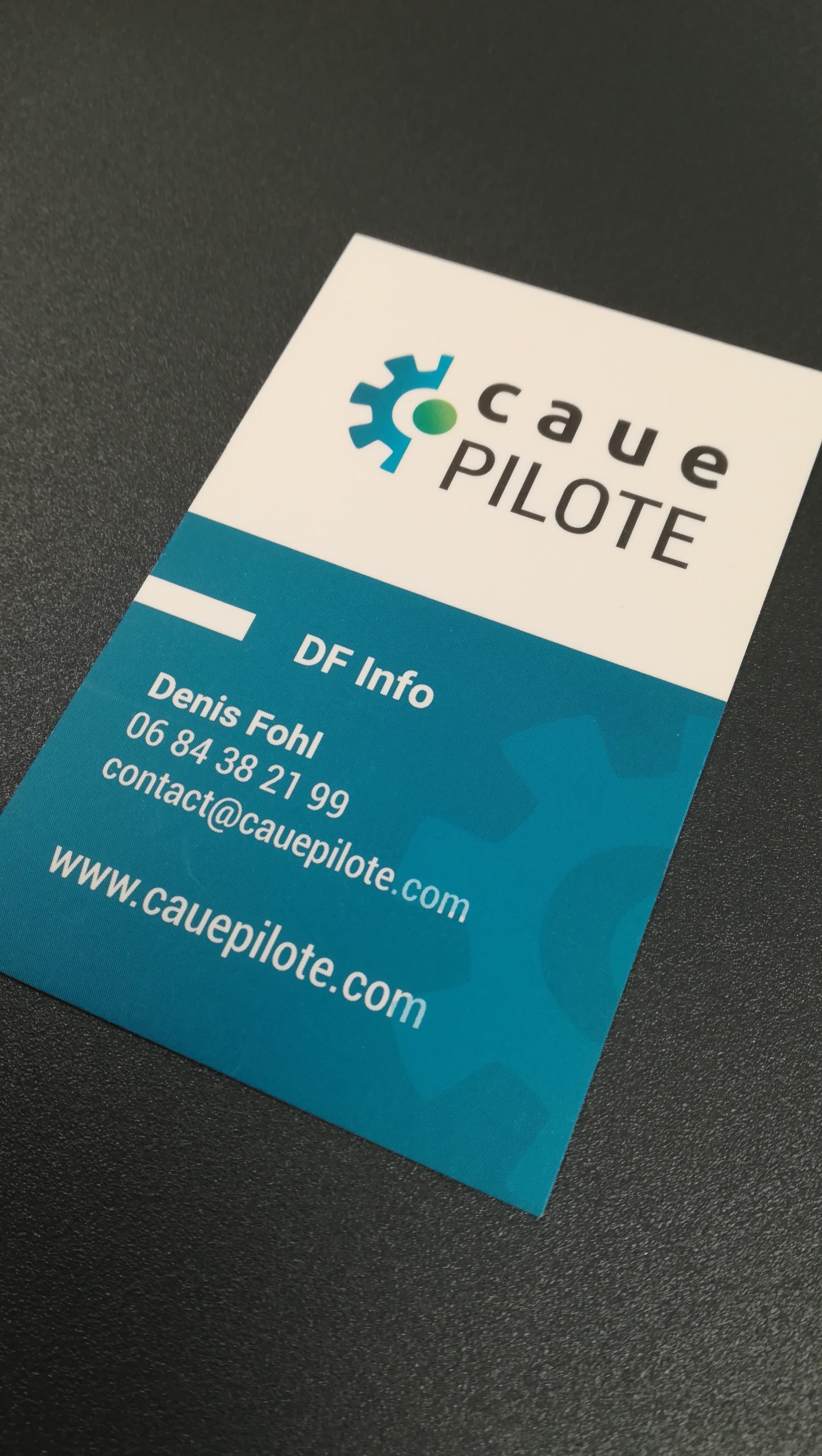 creation-cartes-de-visite-logiciel-de-gestion-et-pilotage-caue-pilote-dordogne
