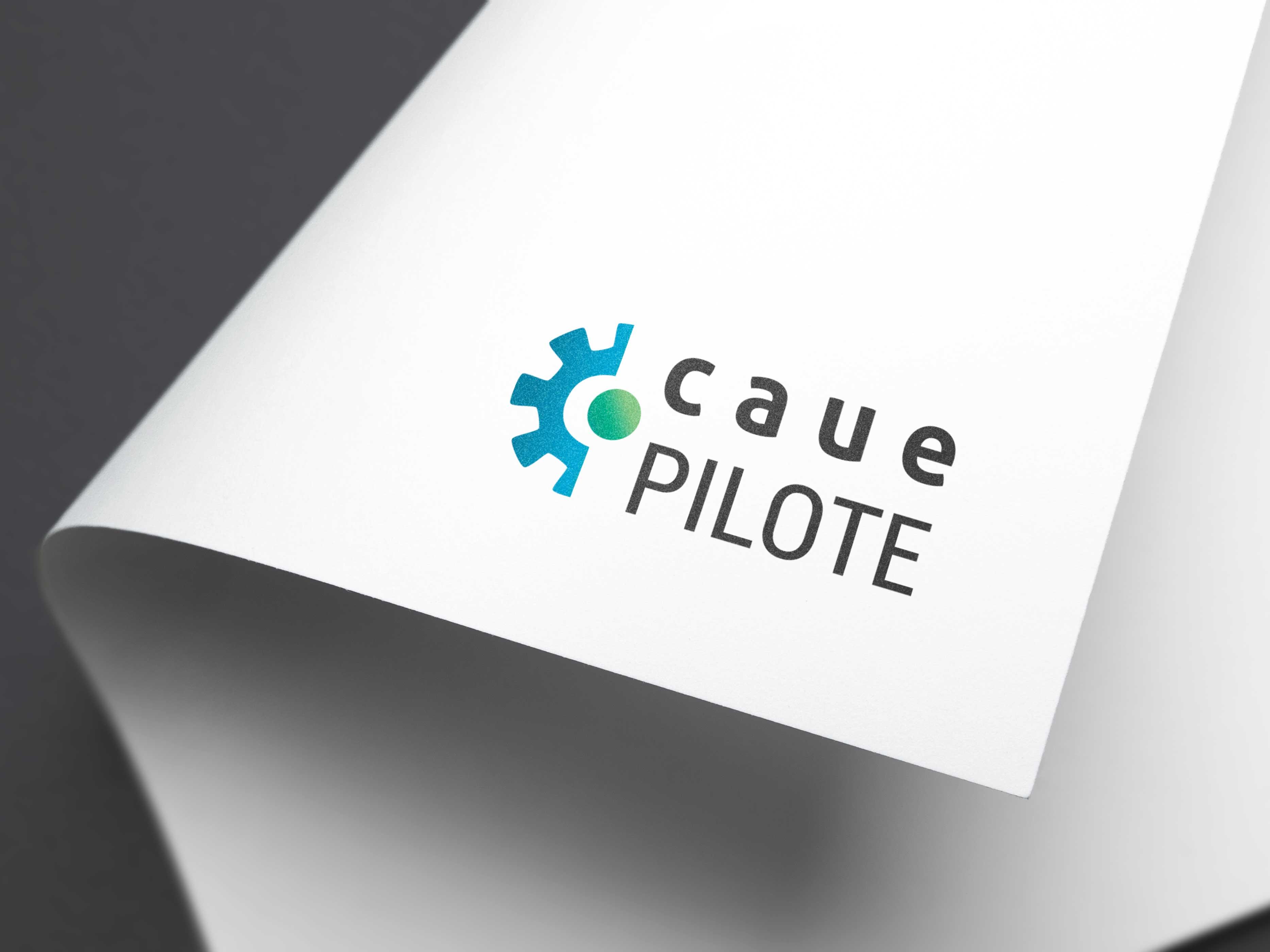 creation-de-logo-logiciel-de-gestion-et-pilotage-caue-pilote-dordogne
