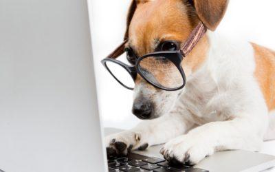 3 règles pour comprendre et optimiser l'expérience utilisateur de votre site internet