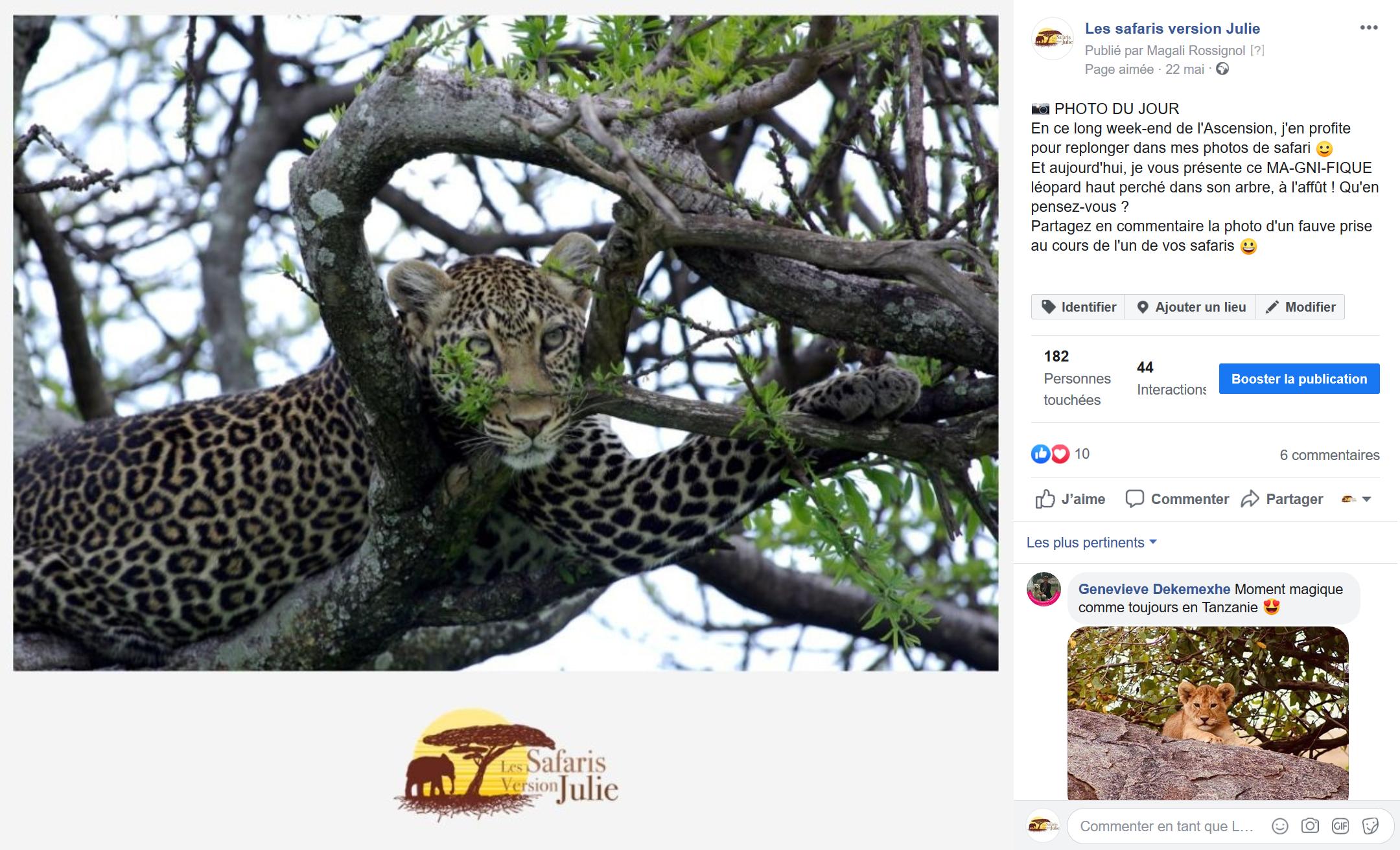 animation-facebook-specialiste-des-safaris-en-afrique-les-safaris-version-julie-dordogne