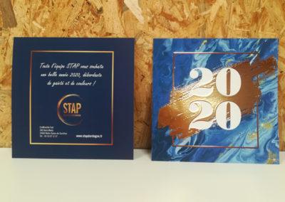 Création Carte de vœux 2019 STAP